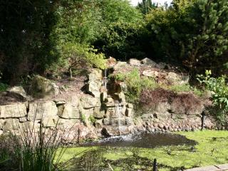 The Garden/Water Feature