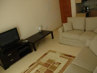 Living area TV/DVD/Sofa bed