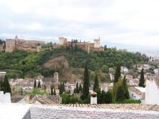 Views of the Alhambra Palace, Granada