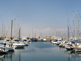 Larnaca marina offering a variety of trips