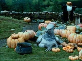 Park your Hippogriff in the pumpkin patch