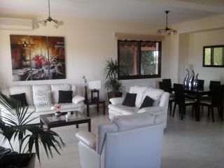 Living room with modern leather settees and dining table