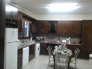 Modern - fully equipped kitchen