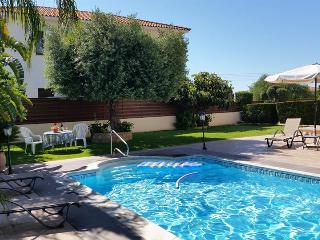 Large green garden with olive tree and crystal clear pool