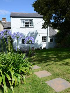 Agapanthas and rear of cottage with it's comfy bench in morning sunlight