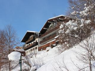 Apartments In Saalbach Hinterglemm And Chalets From 49 Holiday