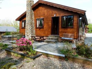 Sensational Dog Friendly Accommodation In Snowdonia National Park Best Image Libraries Thycampuscom